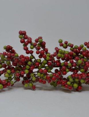 Red & Green Sugar Dew Berry Spray