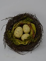 """4.5"""" Nest With Speckled Eggs"""