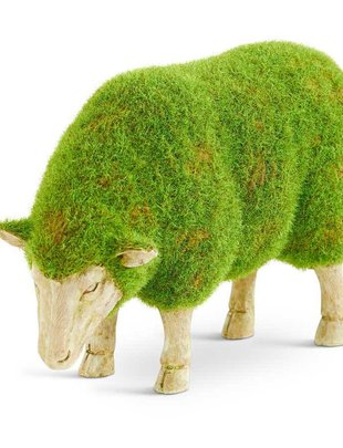 Standing Mossy Sheep