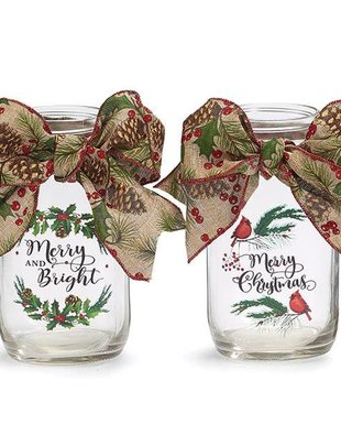 Decorative Christmas Jar (2 Styles)