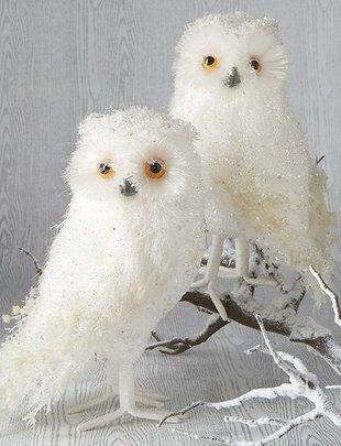 """11.5"""" White Iced Owl (2 Styles)"""