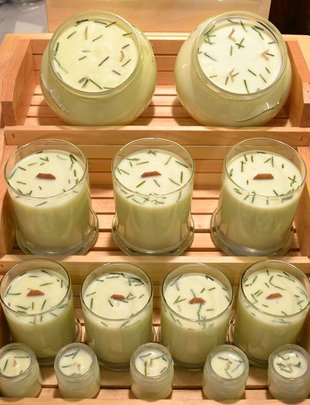 BedRock Tree Farm Fir Needle Soy Candle (4 Sizes)