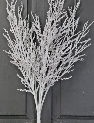 Snowy Tea Tree Twig Spray