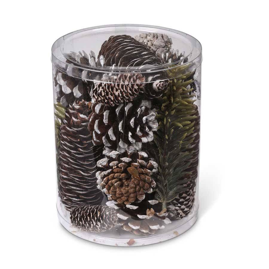 Cylinder of Assorted Pinecones