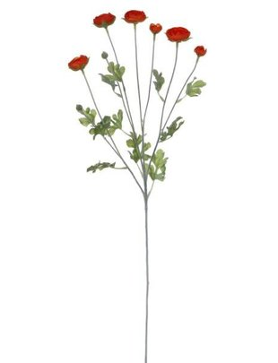 Wild Ranunculus Spray (3 Colors)