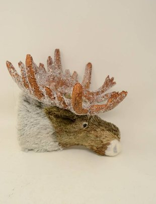 Frosted Mr. Moose Head