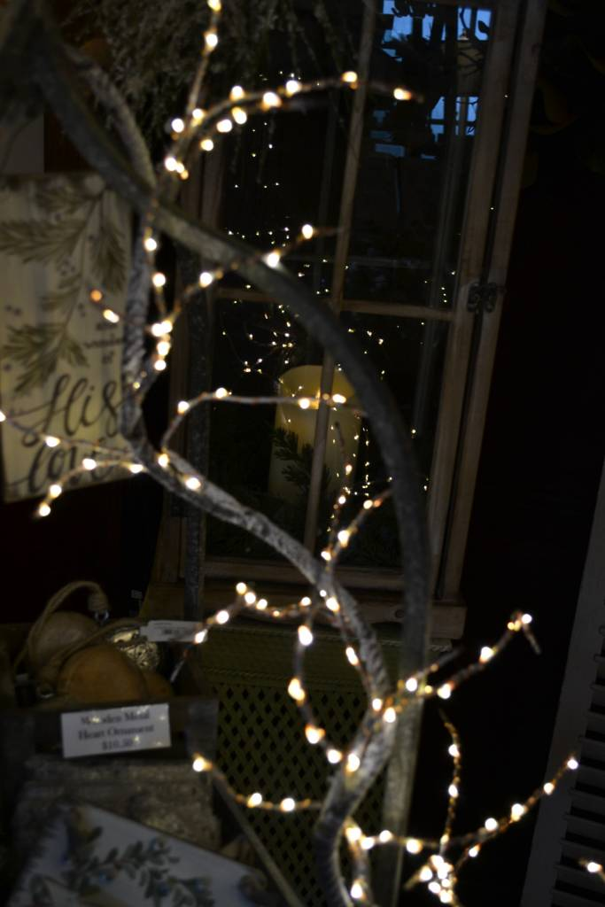 5-ft LED Natural Snow Branch Garland
