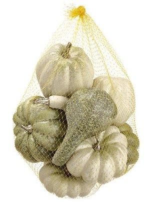 White Green Pumpkin Gourd Assortment Bag