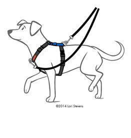 Blue 9 Balance Harness