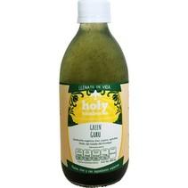 Green Guru Holy Kombucha 355 ml.