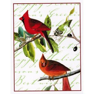Common Cardinal Grosbeak cards