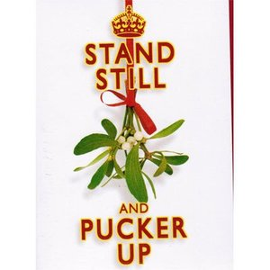 Stand Still and Pucker Up Cards