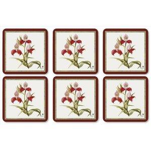 Pimpernel Pimpernel Botanical Orchid Coasters