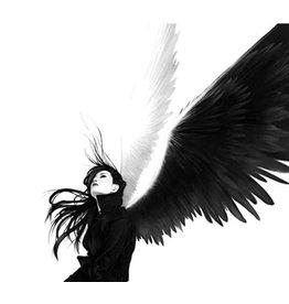 T-Daawg angel 60/3