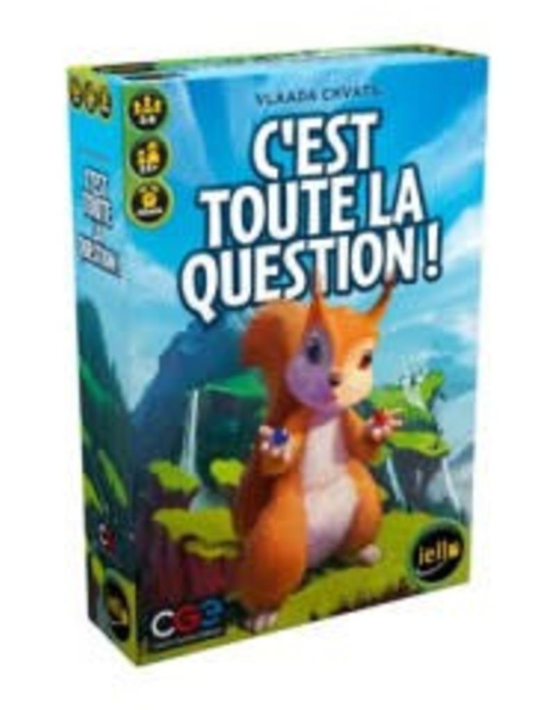 C'est Toute la Question! (FR)
