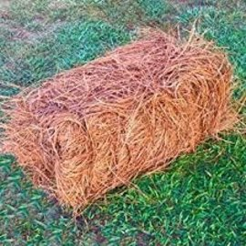 Pine Straw - Long Leaf - bale