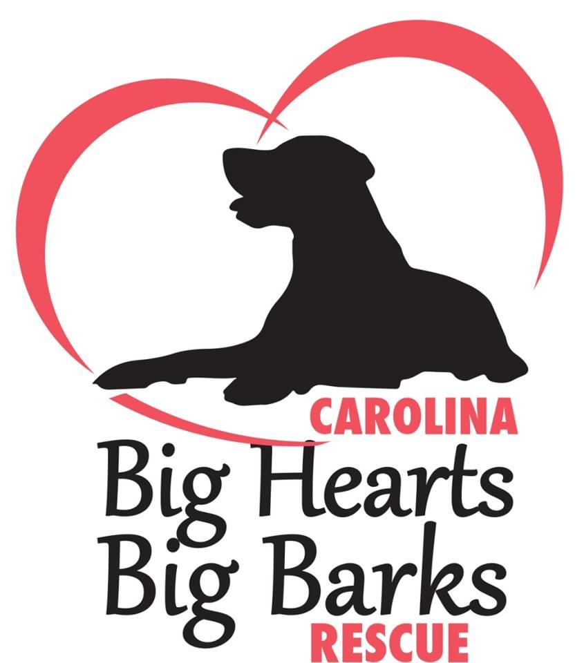 Carolina Big Hearts Big Barks Rescue