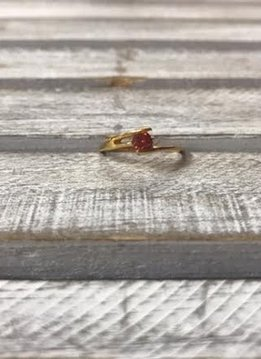Stainless Steel Gold IP Ring w/Red CZ size 5