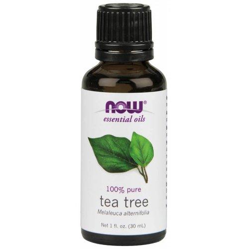 NOW TEA TREE OIL  1 OZ