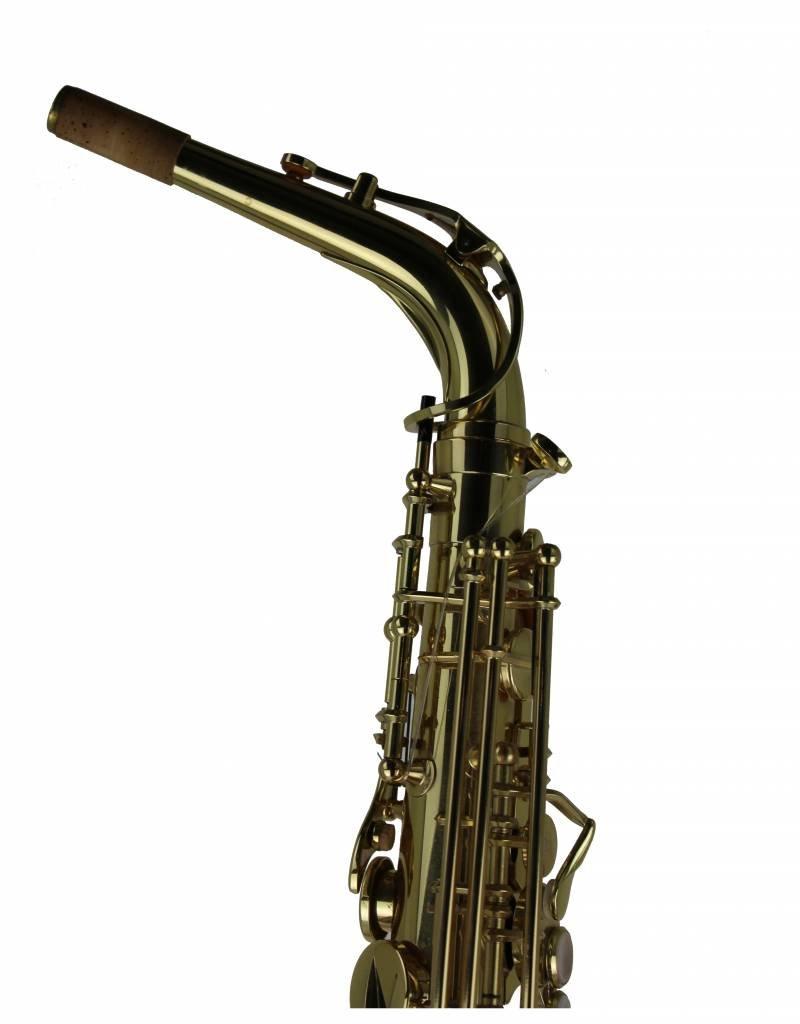 Yanagisawa Yanagisawa Professional Alto Saxophone