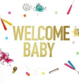 alexis mattox design welcome baby glitter banner