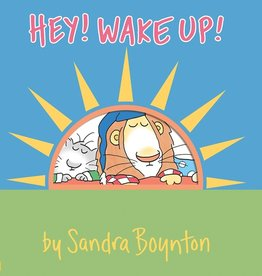workman publishing hey wake up book