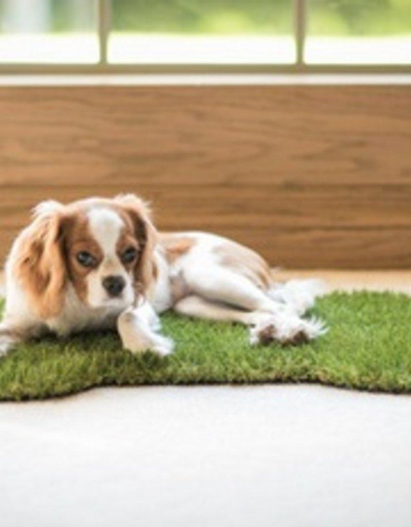 dog bone grass doormat