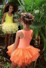 iloveplum anaise tutu dress