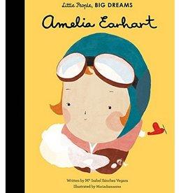 amelia earhart children's book