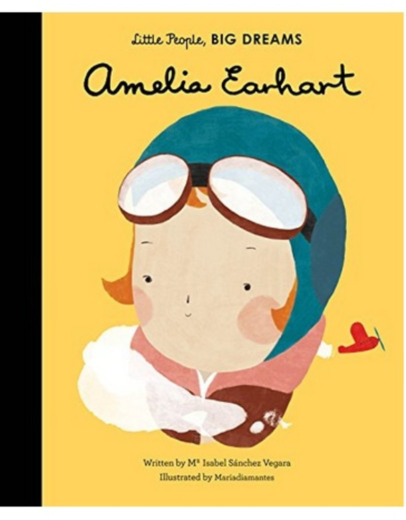 amelia earhart children's book