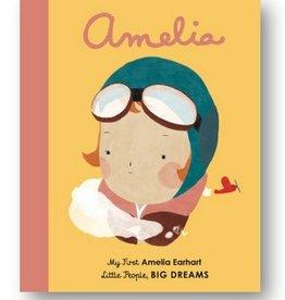 my first amelia earhart book
