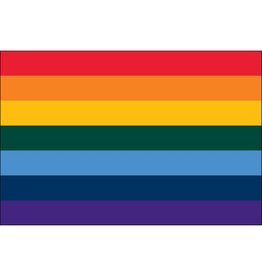 Rainbow Nylon Flag