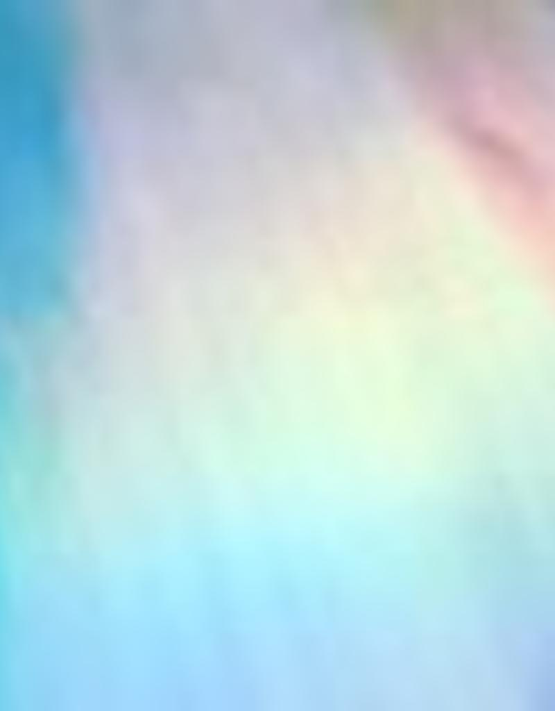 Thermoflex HTV - FOIL - PRINT SILVER HOLOSHINE