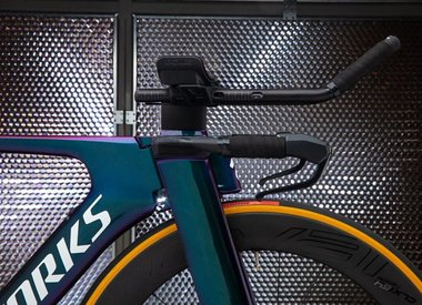 NEW LIMITED EDITION 2019 S-WORKS SHIV