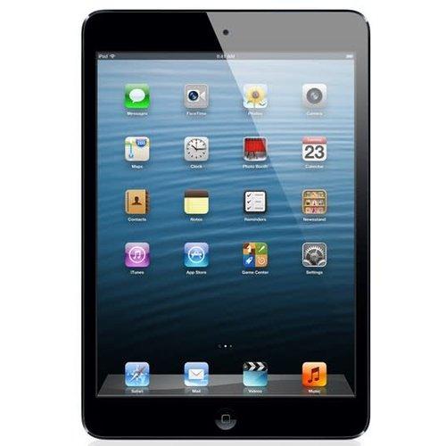 Apple iPad Mini 16 Go - Usagé