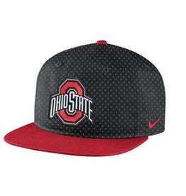 Nike Ohio State University DNA True Flat Brim