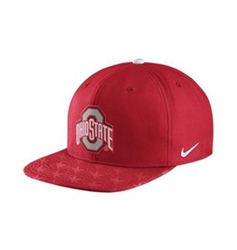 Nike Ohio State University Flat Brim Pro Hat