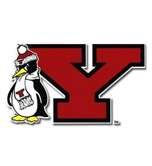 Youngstown State Auto Decal