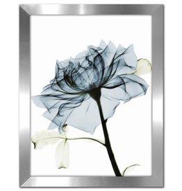 """Cadre Rose Bleue #2 SOFT TEAL ROSE 2 12"""" X 16"""""""