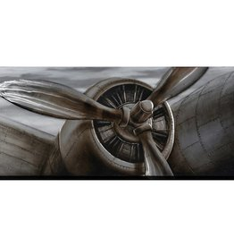 """Toile hélice avion POWERING UP 32"""" X 71"""""""