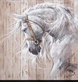 """Toile cheval blanc WHITE PRINCE 40"""" X 40"""""""