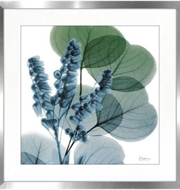 "Cadre fleur bleue LILLY OF EUCALYPTUS 30"" X 30"""