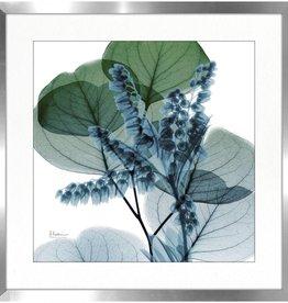 """Cadre feuille verte fleur bleue LILY OF EUCALYPTUS 30"""" X 30"""""""