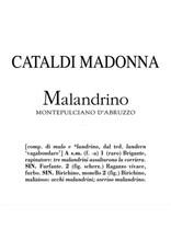 Elegant Cataldi Malandrino
