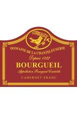 Intense Domaine De La Chanteleuserie Cabernet Franc