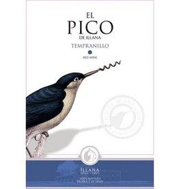 Candid El Pico de Illana