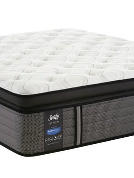 Sealy Thorton Cushion Firm Euro Pillow Top
