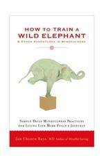 How to Train a Wild Elephant: Bays