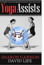 Integral Yoga Distribution Yoga Assists: Gannon & Life