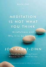 Integral Yoga Distribution Meditation is Not What You Think